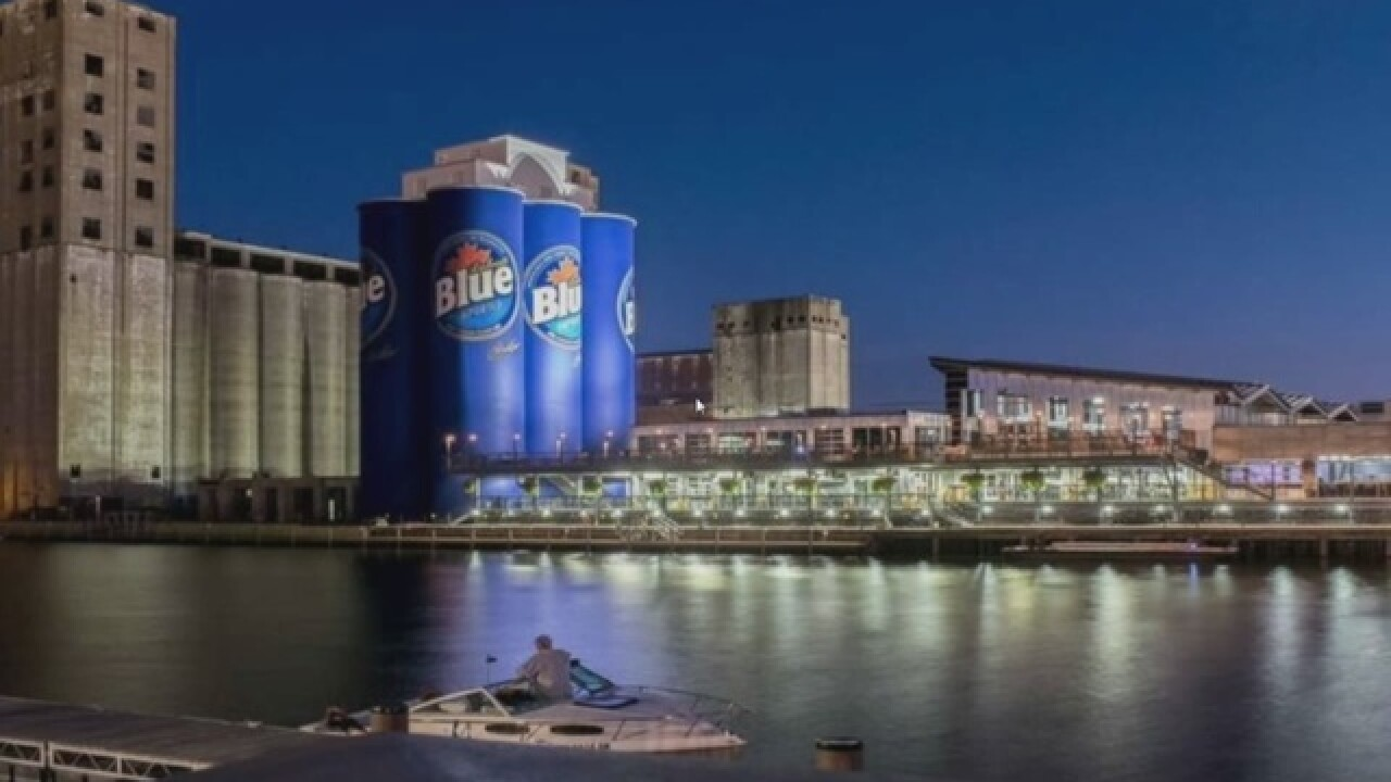Climb grain silos and soar over Buffalo Riverworks this summer