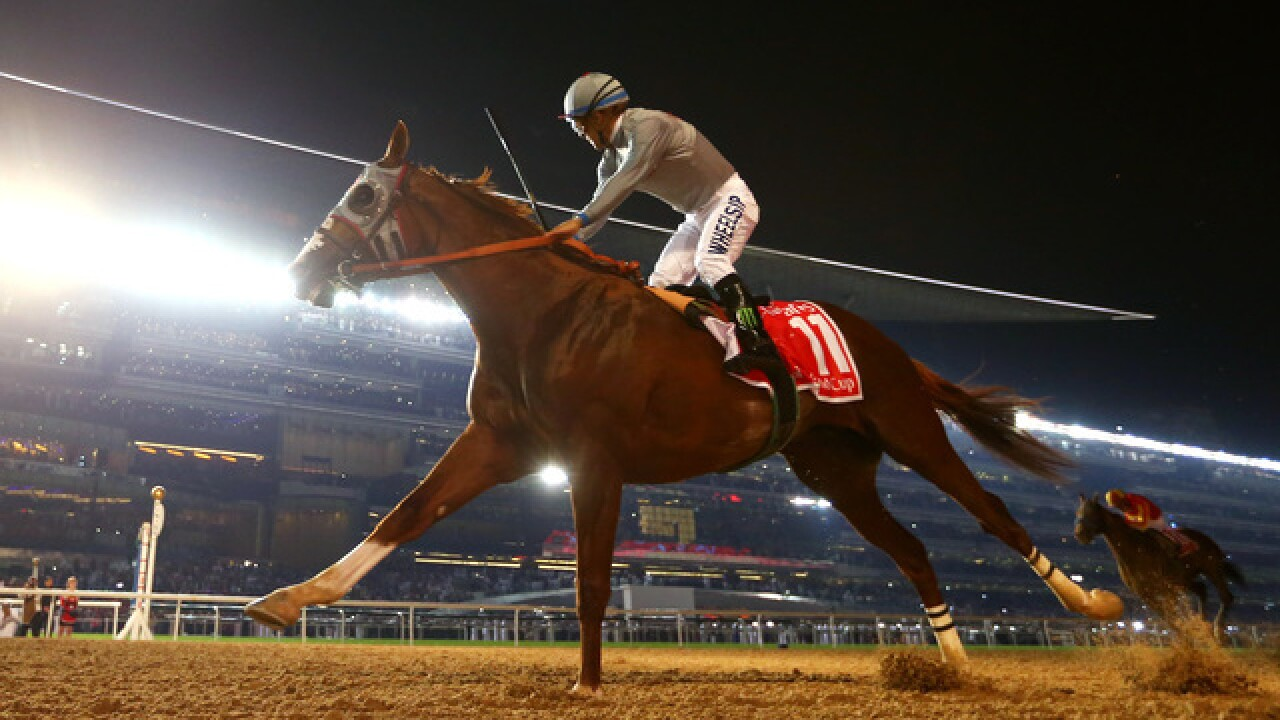 Hall of Fame jockey recovering after fall