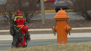 bagged fire hydrants