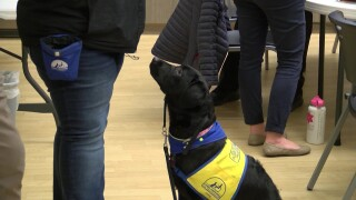 Waggin' Tails is working to bring a companion dog to East Middle School