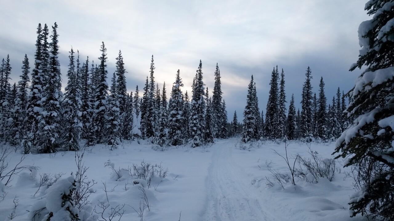 Yukon ultra_trail 3.jpg