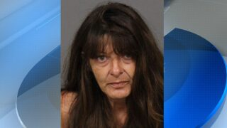 Most Wanted Wednesday: Cindy Lee Fox