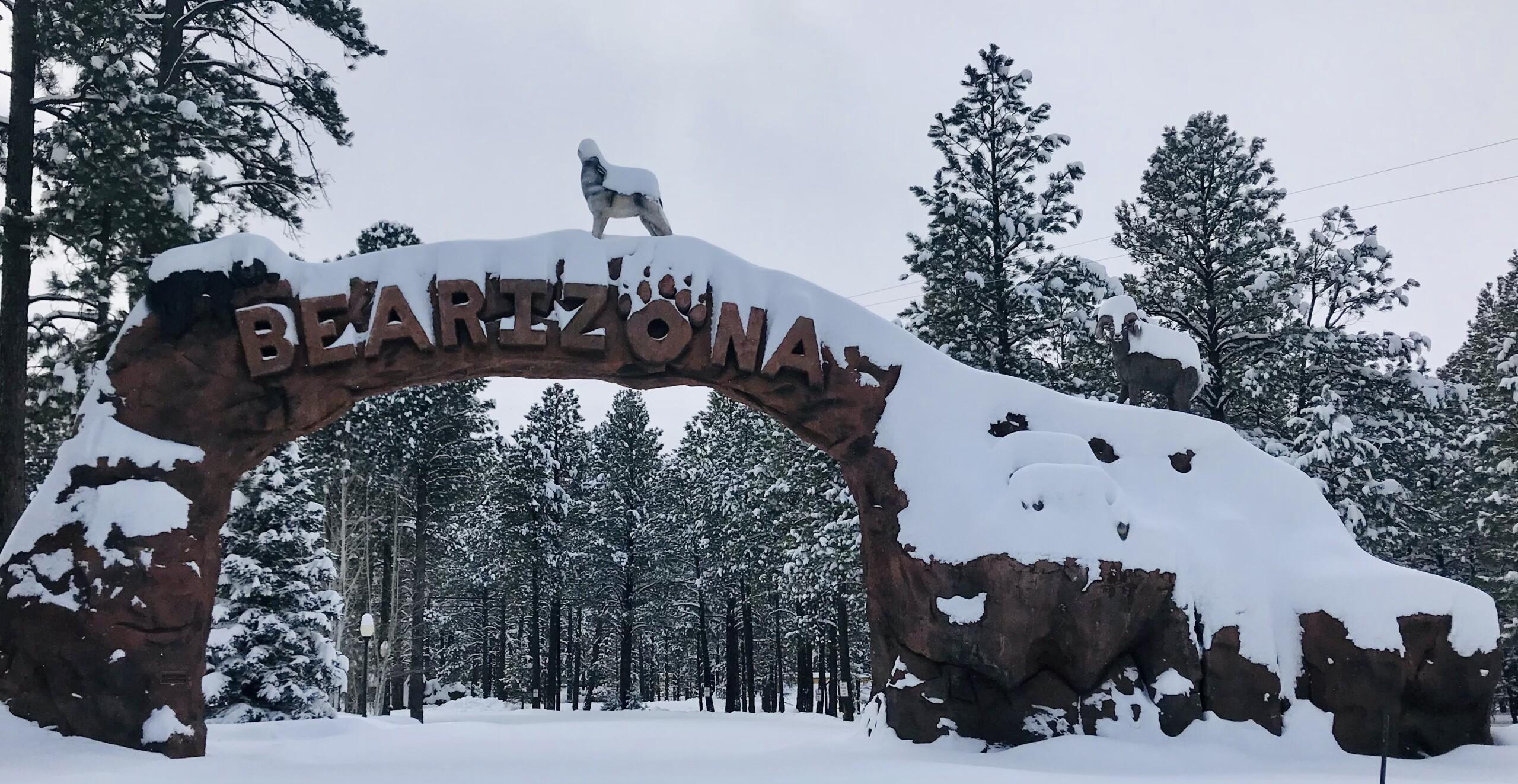 Bearizona Wildlife Park in Northern Arizona