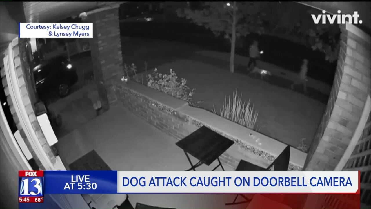 Intense doorbell camera footage captures sound of pit bulls attacking man in Salt Lake City