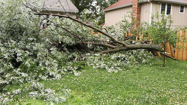PHOTOS: Storms leave damage for communities across KC metro area (6/17/17)