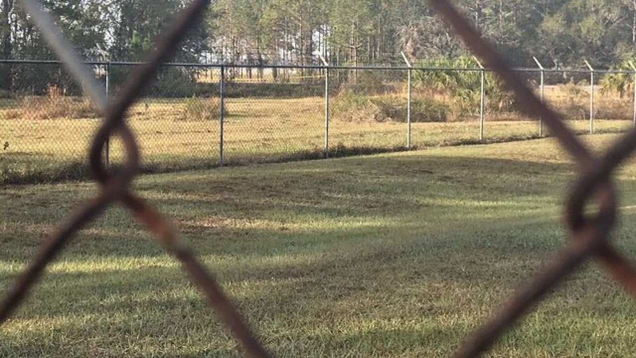 Dead reported in small plane crash in Bartow