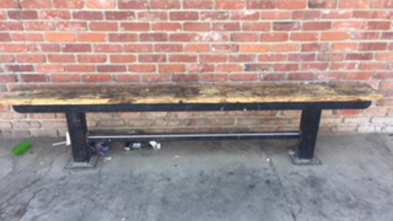 Trout's historic bench donation