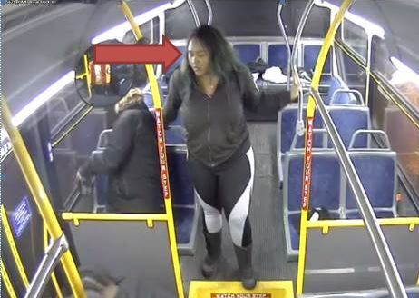 Bus Attack 3.jpg