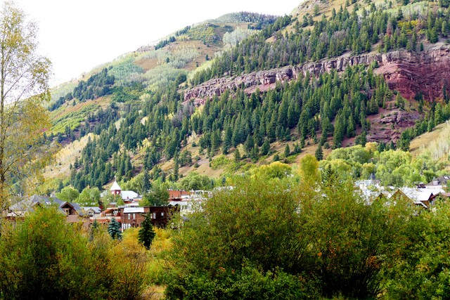 GALLERY: Changing leaves light up Colorado's high country