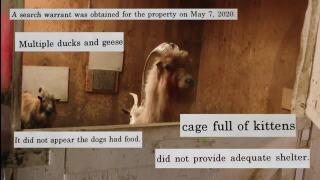 Animal welfare hearing scheduled in Polejewski case