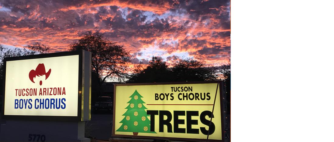 Boys Chorus Christmas Trees.png