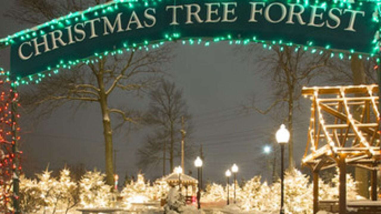 Hamburg Christmas 2020 Hamburg Fairgrounds Festival of Lights will return with '2020