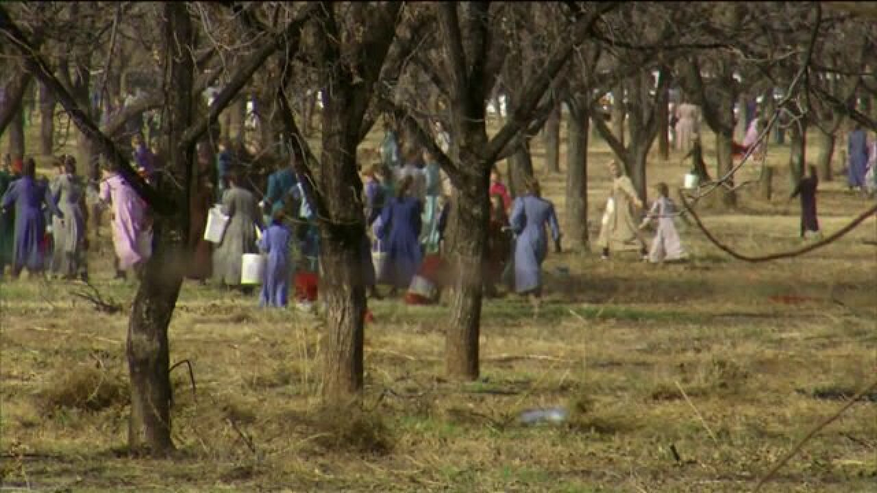 FLDS Church named in lawsuit over child labor; action aims to enforce $1.9 million in penalties