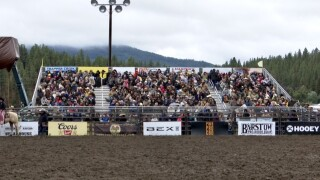 Darby Rodeo