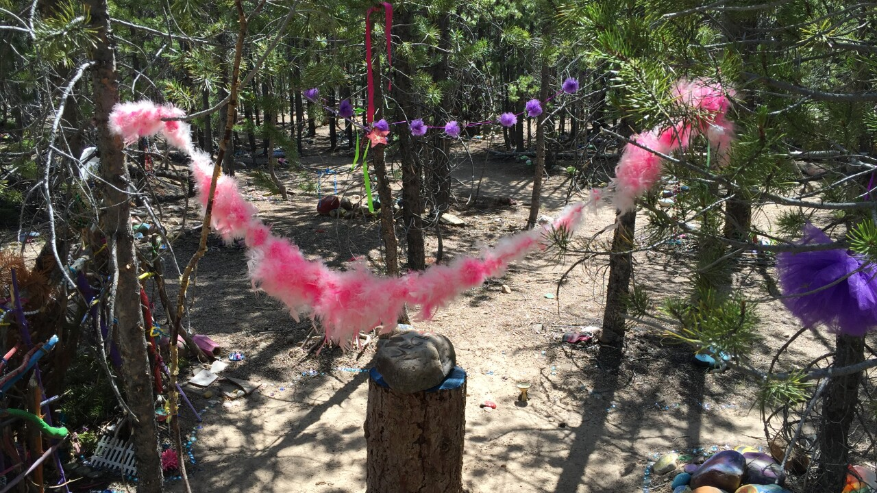 Utah's Fairy Forest: Magical orMessy?