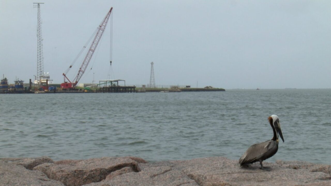 Port, environmentalists square off over Harbor Island