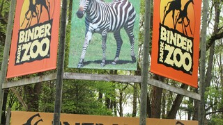 Zoo welcomes public back