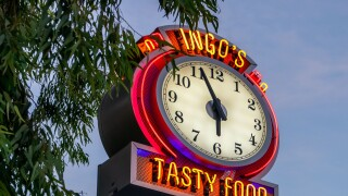 Ingo's Tasty Food - Handout image.jpg