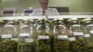 Should Englewood sell recreational marijuana?