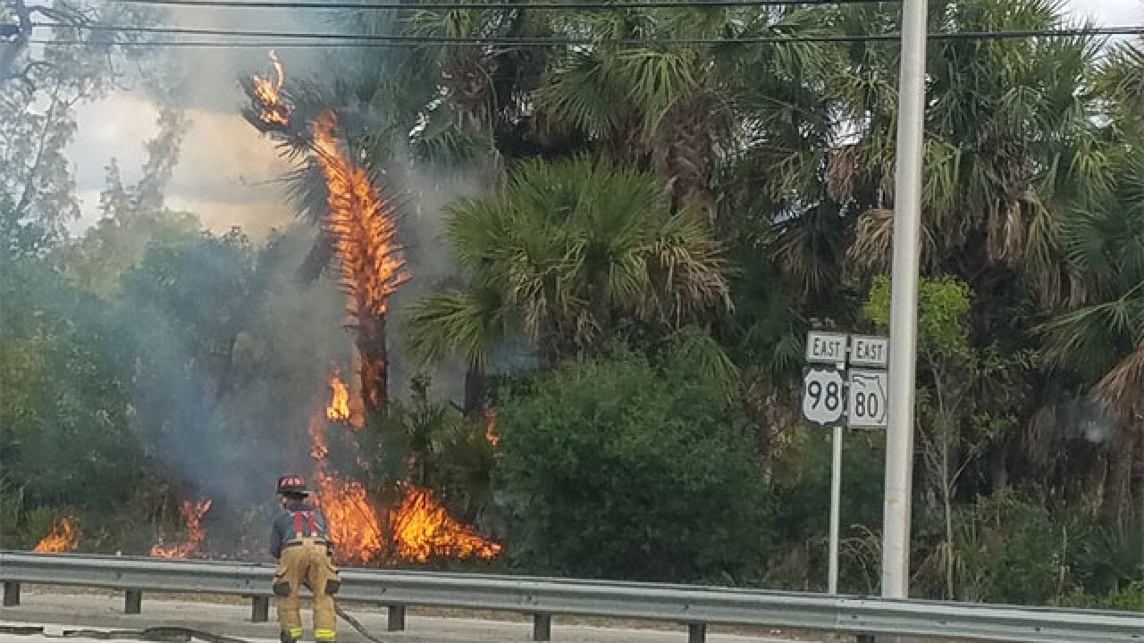 Firefighters working West Palm Beach brush fire