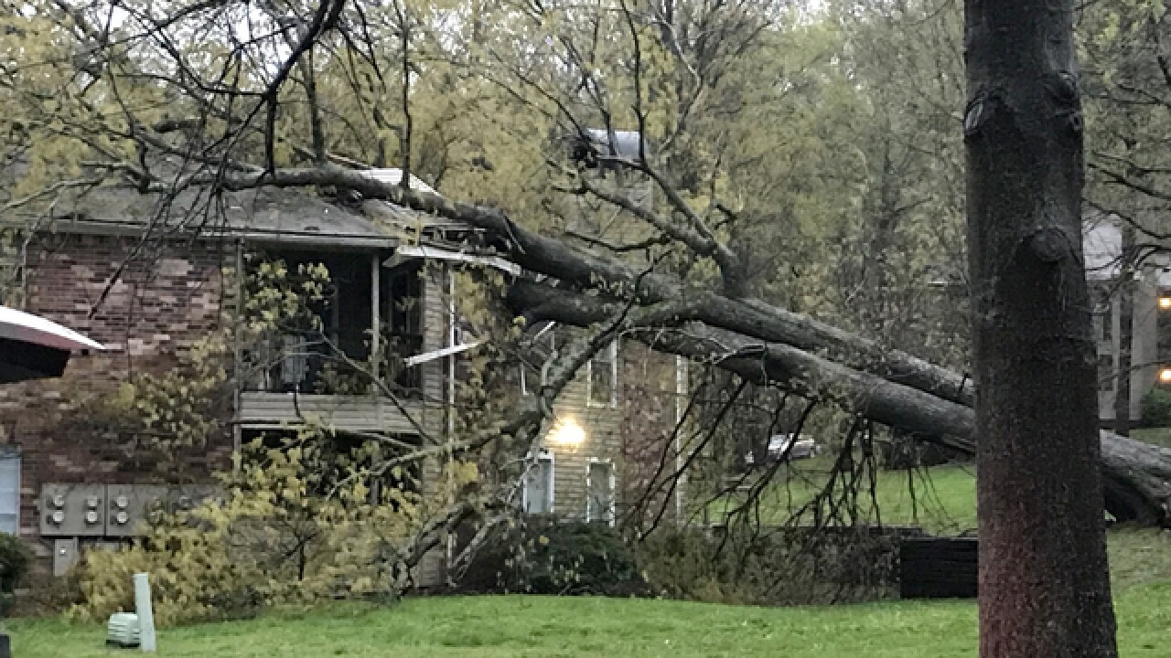 Large Tree Falls On Antioch Apartment Building