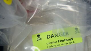 Fentanyl is now the deadliest drug in America, CDC says