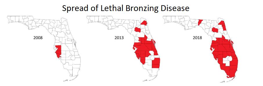 map lethal bronzing disease