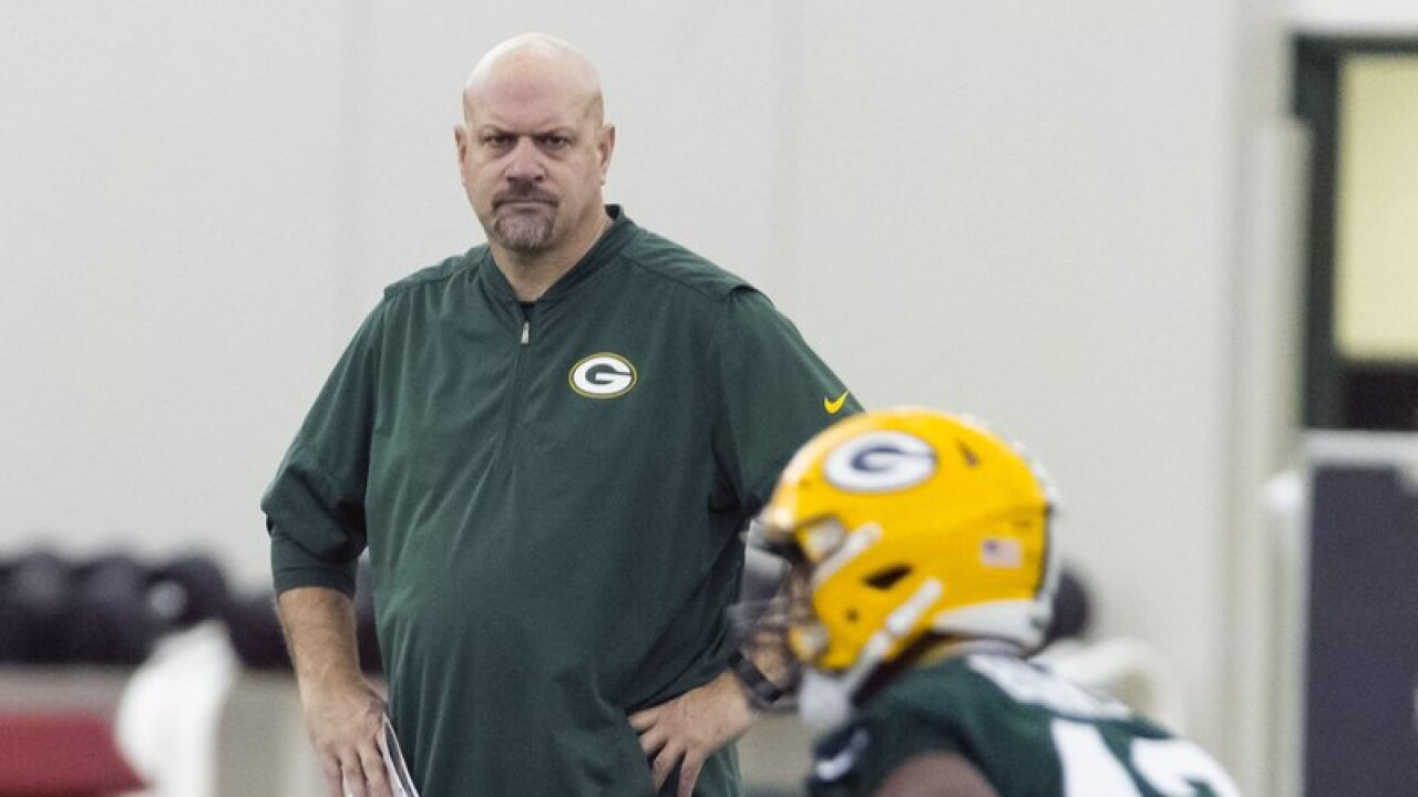 Green Bay Packers' defensive coordinator Mike Pettine