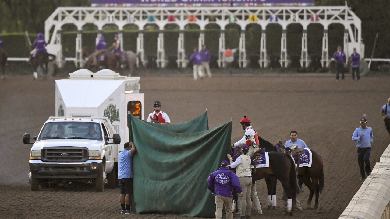 Breeders Cup Classic Horse Racing