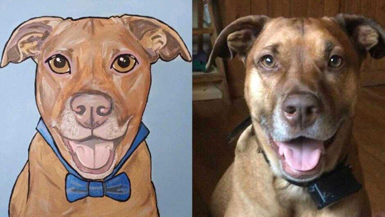 dog-portraits1.jpg