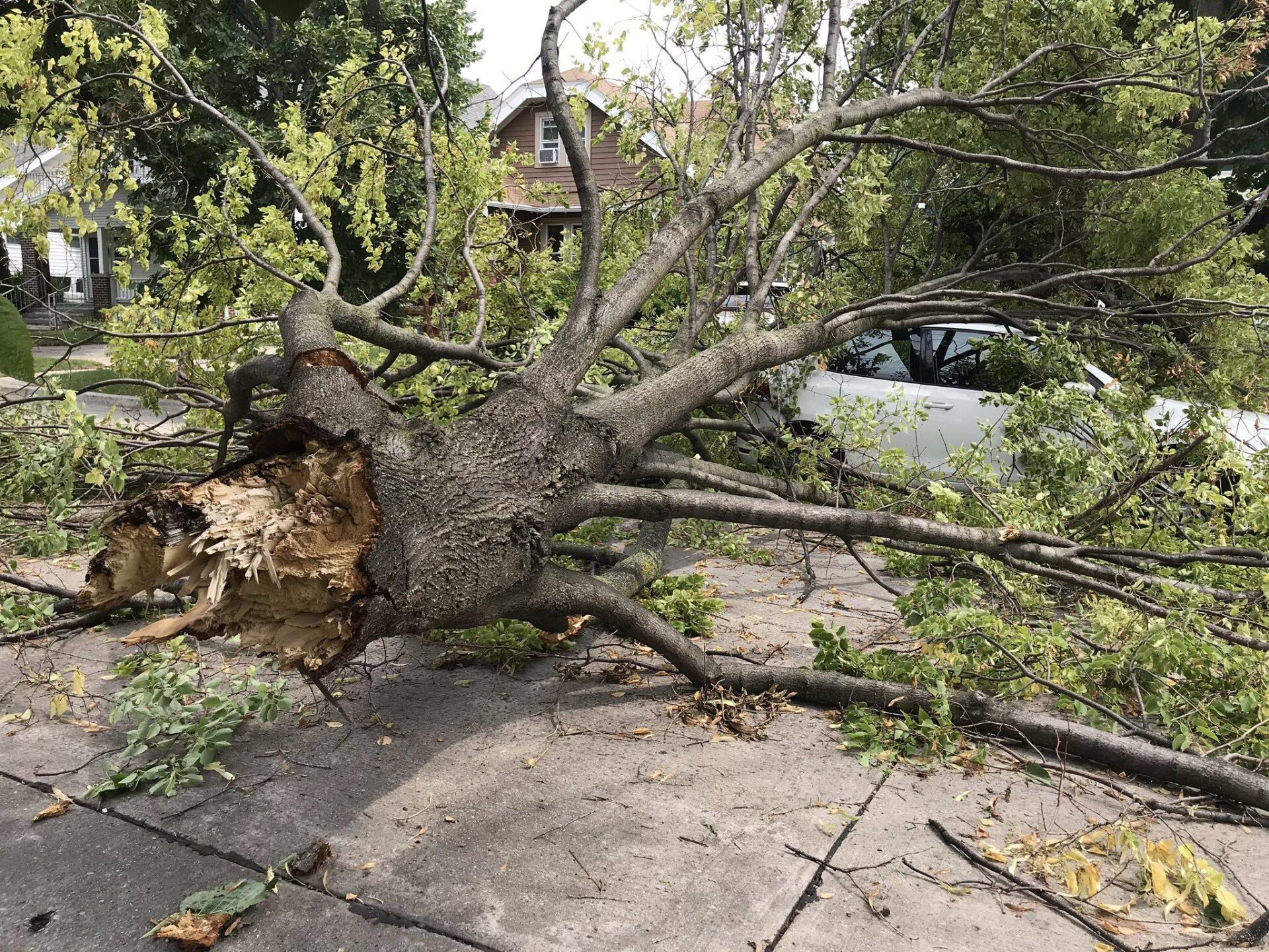 Storm-Damage-2.jpg