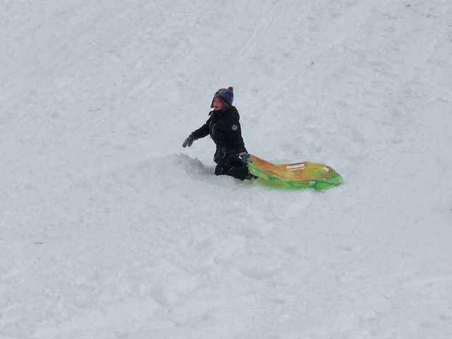 sled2.jpg