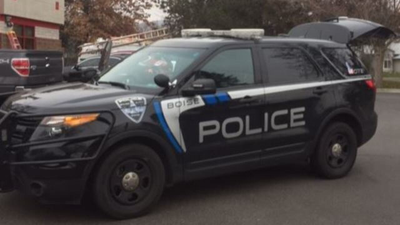 Police: Vandals hit multiple Boise cars, homes