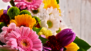 The best Mother's Day deals and freebies