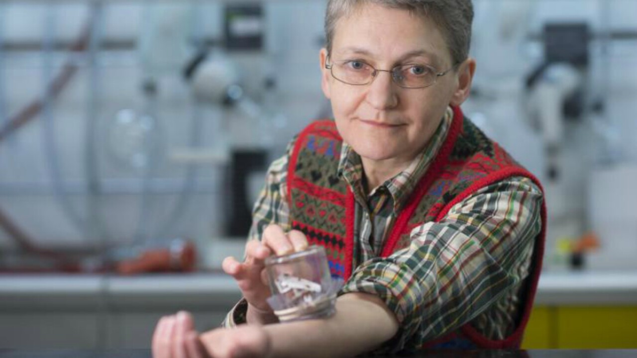 Woman allows thousands of bedbugs to feed on her over 5 years, makes incrediblediscovery