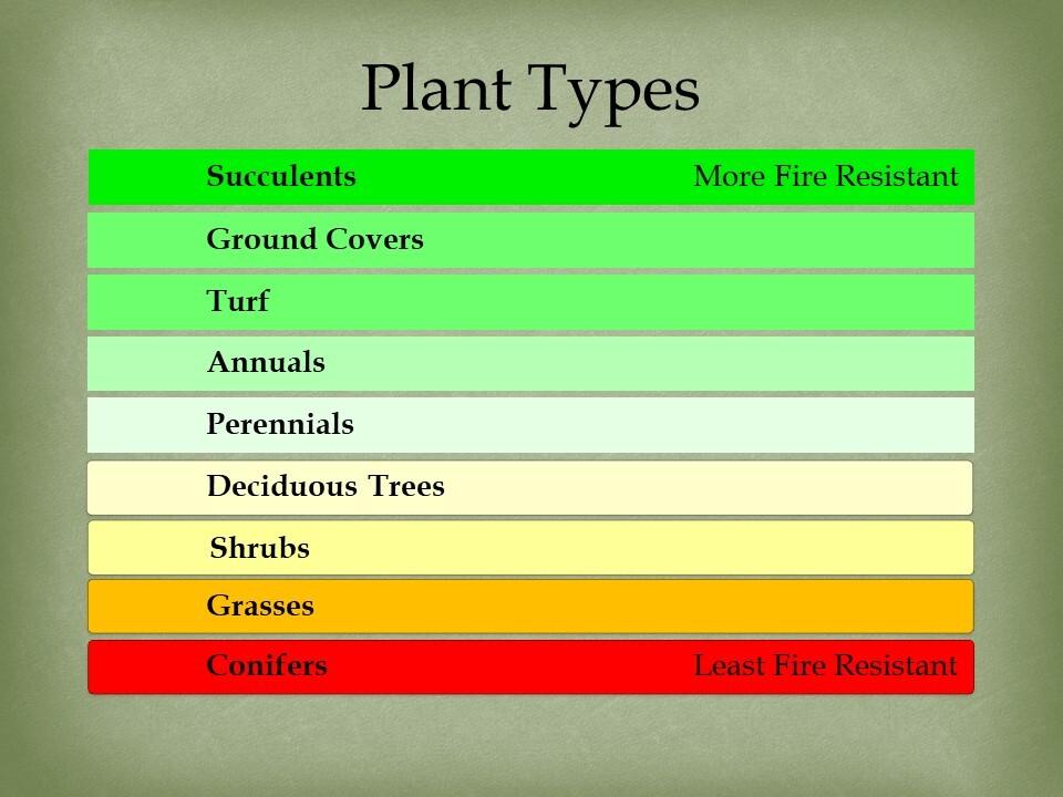 firewise plants