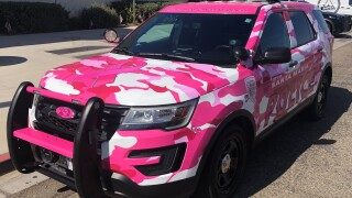 sm pink cruiser.jpg