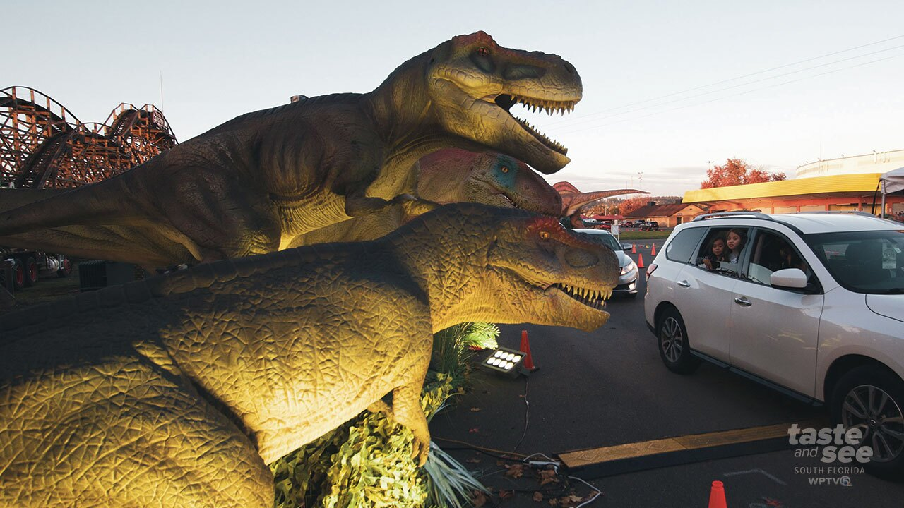 The South Florida Fairgrounds transforms into a prehistoric adventure featuring life-sized roaring dinosaurs that move!  For $49 families will stay in their cars and can listen to an educational audio track as they pass a 40-foot T-Rex and other beasts.
