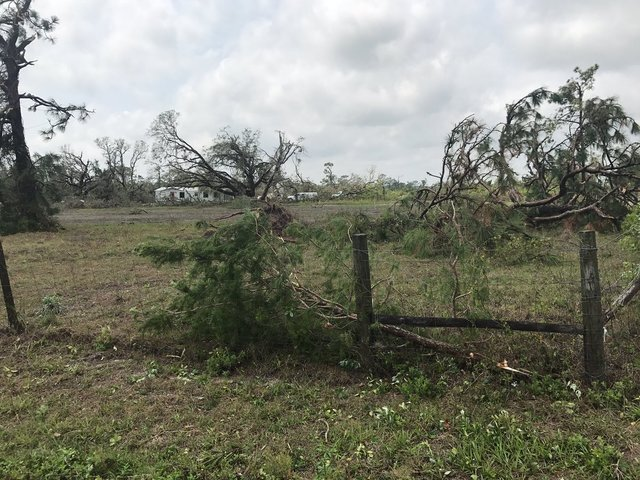 PHOTOS: Severe weather hits Okeechobee County