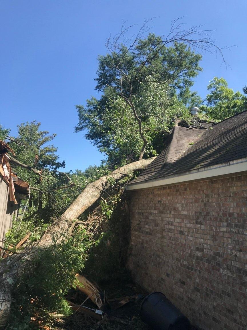 Damage to house on Alexander Street (1).jpg