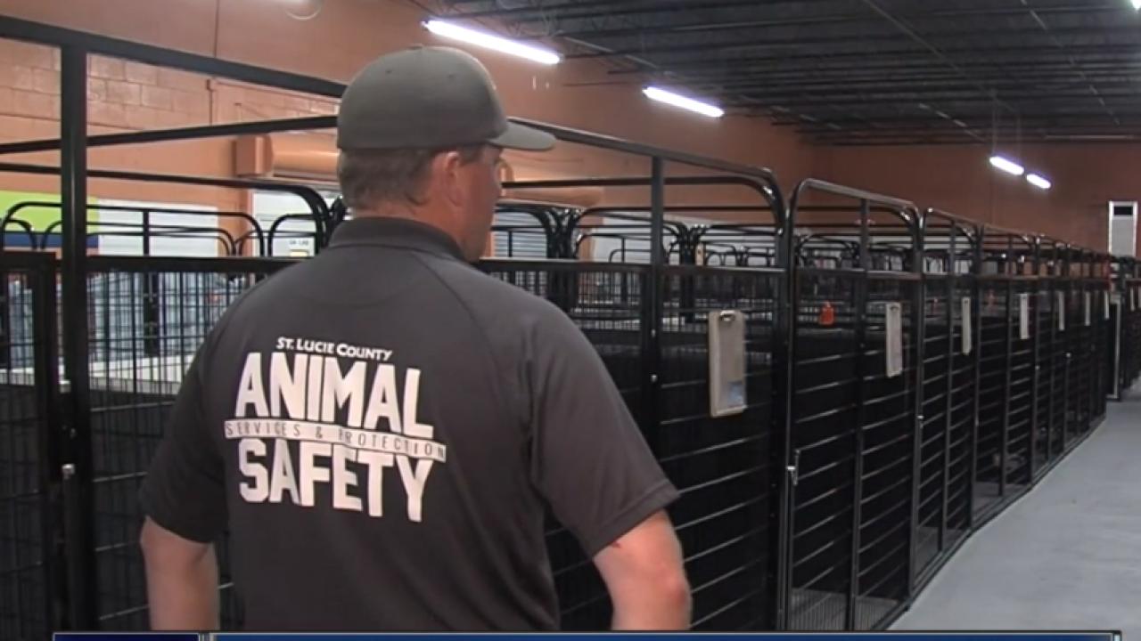 wptv animal shelter.PNG
