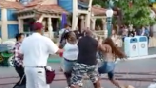 Children watch as adults fight at Disneyland