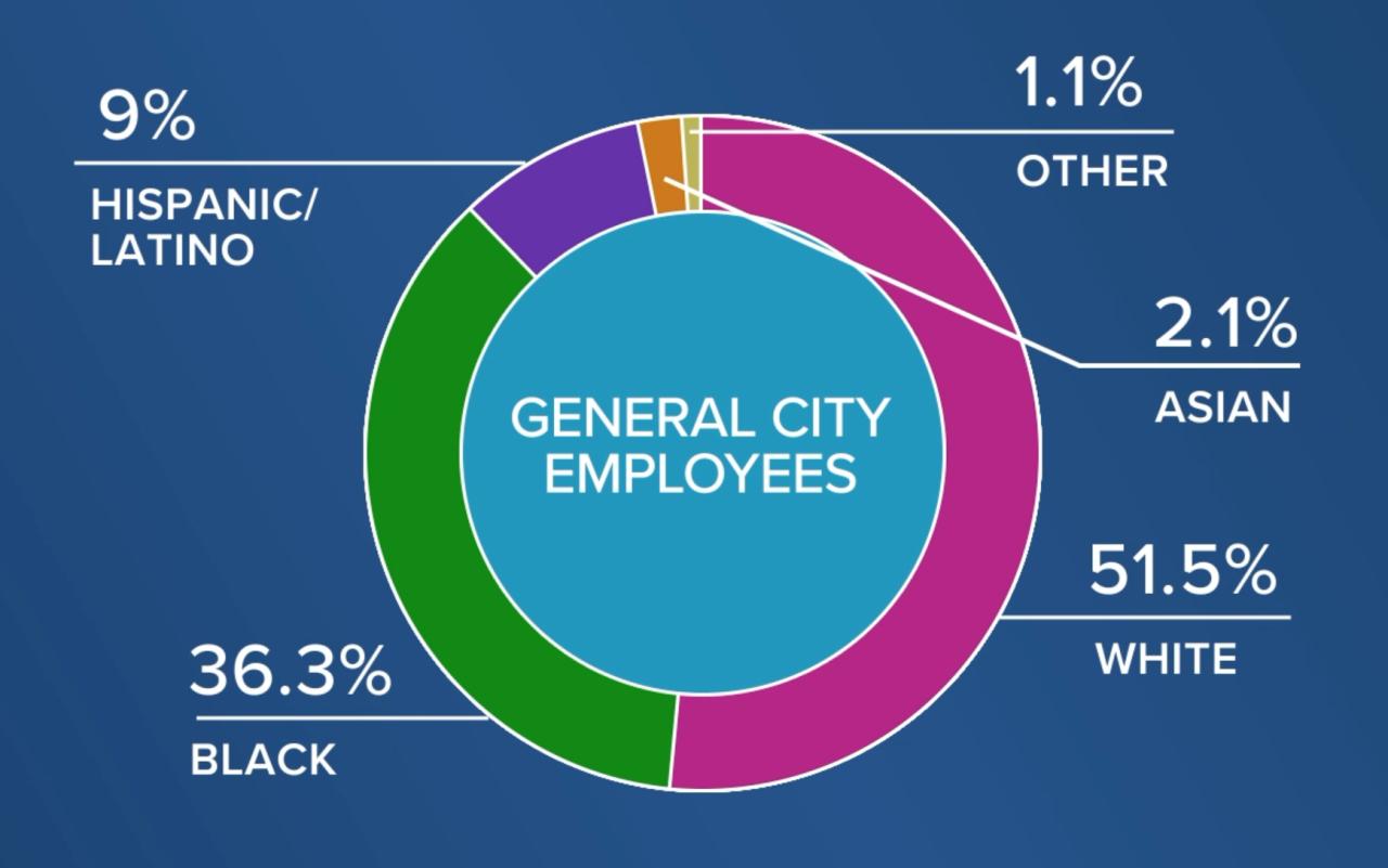 General City Employees racial demo