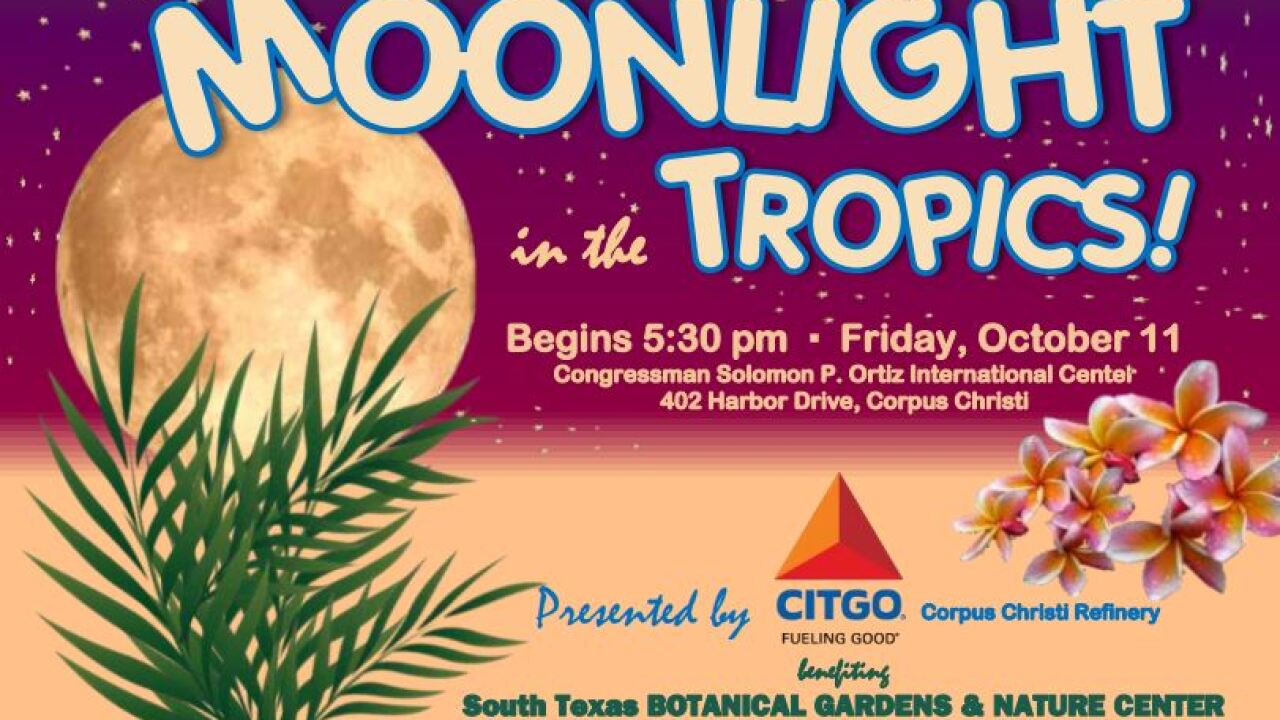 Moonlight in the Tropics