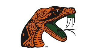 Florida A&M Rattlers logo