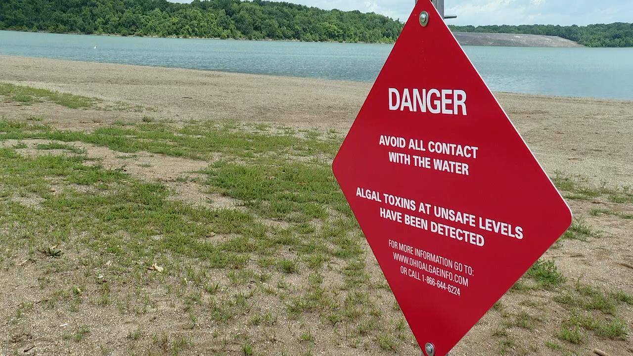 WCPo lake algae.png