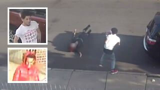 Woman thrown to ground in Queens purse snatching