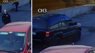 TaoTao Scooter Theft Suspect