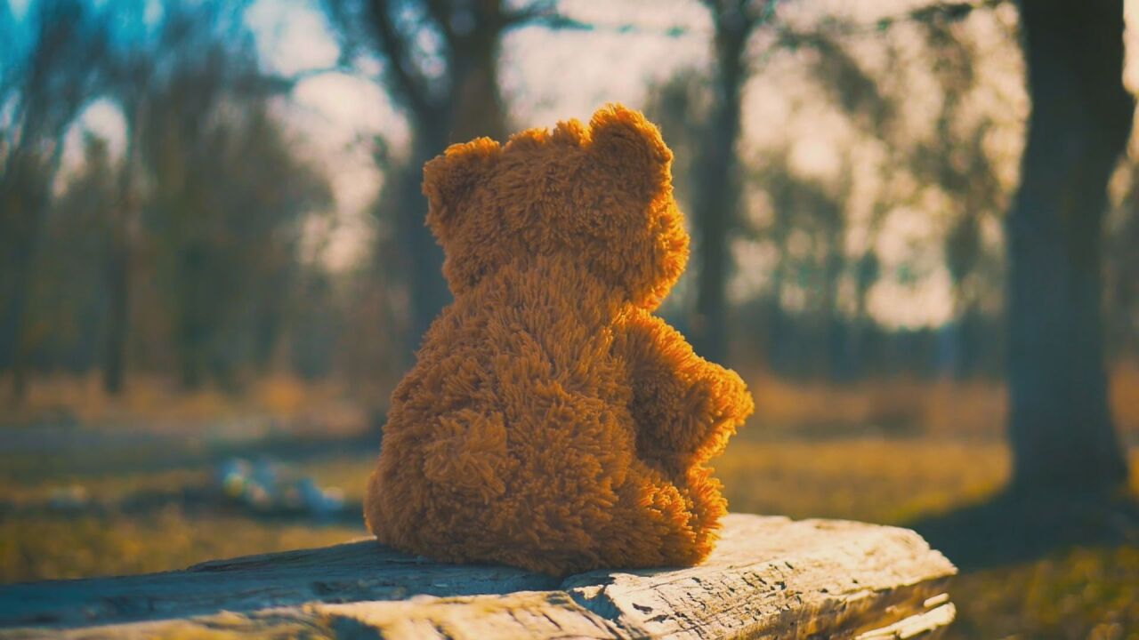 Child's teddy bear
