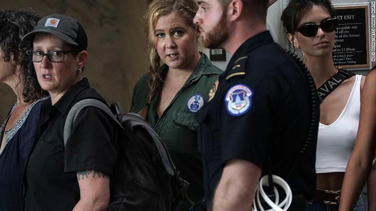 Amy Schumer is arrested in protests